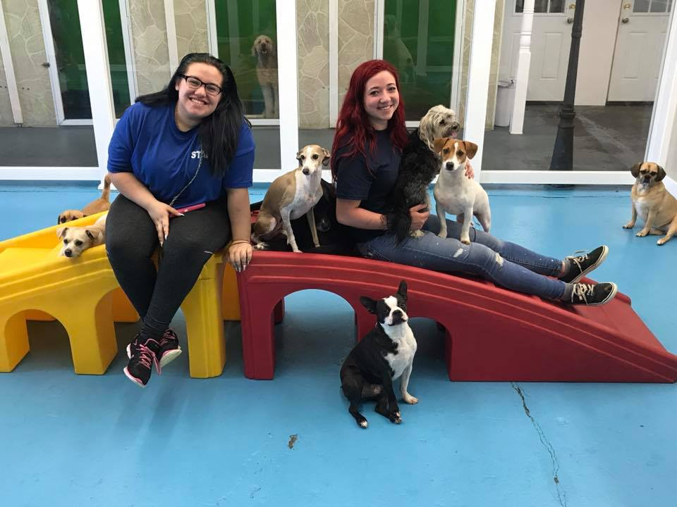 Hounds Town Farmingdale Experiences Record Breaking Month